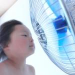 【夏のマリンインテリア】涼しい工夫をクッションで実践!