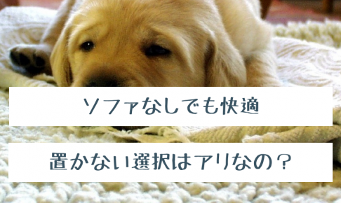 ソファなしの部屋で寛ぐ犬