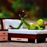 【経験談】大学生と社会人の一人暮らしに必要な家具と不要なもの